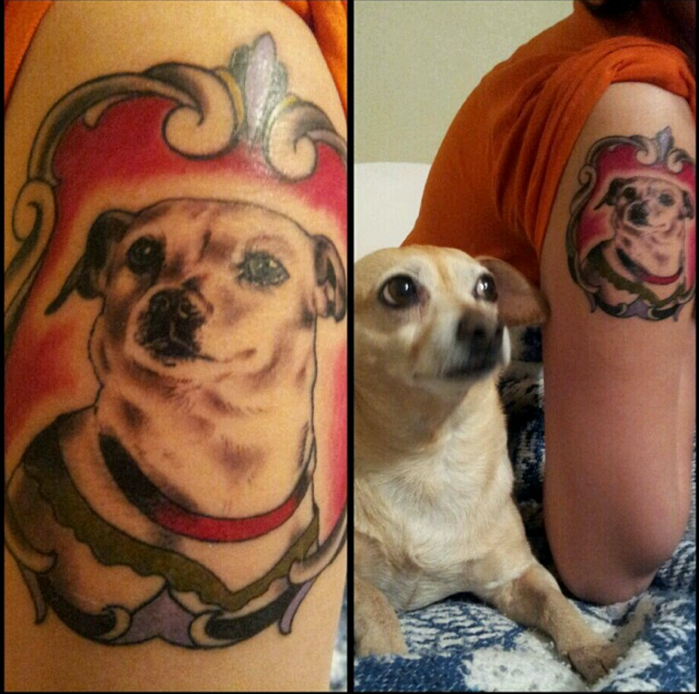 dog in frame tattoo with dog